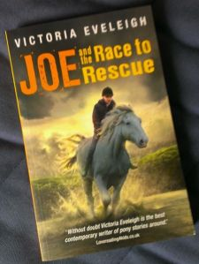 Book cover - Victoria Eveleigh - Joe and the Race to Rescue