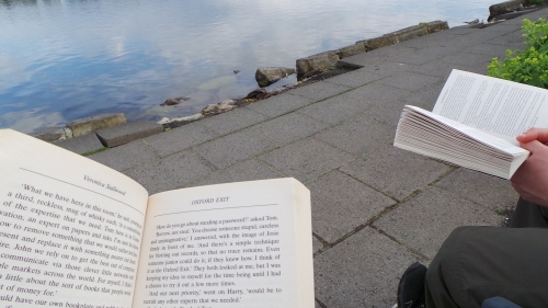 Books by the lake in Reykjavik
