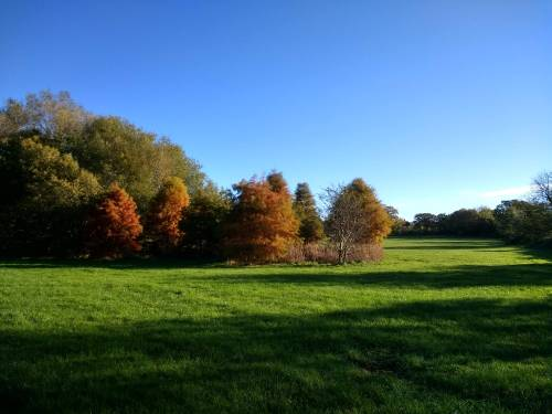 Hazelwell Park