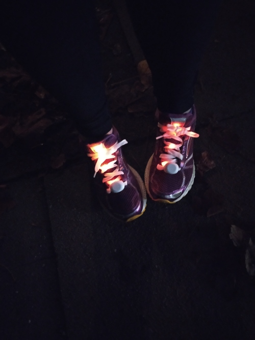 Light-up shoe laces